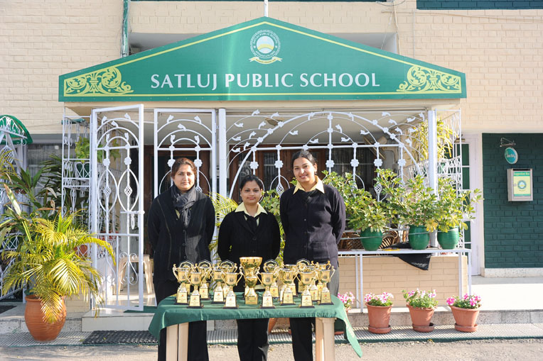 satluj public school winter homework